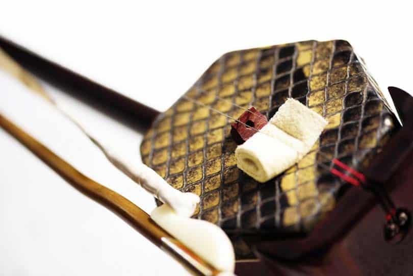 Chinese orchestra instrument Erhu